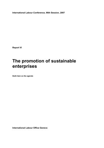The promotion of sustainable enterprises - International Labour ...