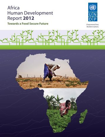 Africa Human Development Report 2012 - UNDP - United Nations ...