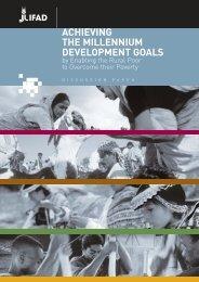 achieving the millennium development goals - International Fund for ...
