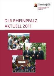 dualer studiengang (dsg) eine kooperation auf er - DLR Rheinpfalz ...