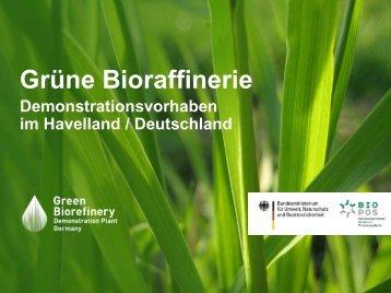 Grüne Bioraffinerie - Demonstrationsvorhaben im ... - biorefinica