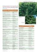 KLimaArtenMatrix - Stadtbäume - Die grüne Stadt - Page 2