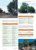 KLimaArtenMatrix - Stadtbäume - Die grüne Stadt - Page 4
