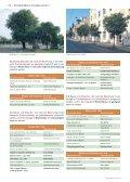 KLimaArtenMatrix - Stadtbäume - Die grüne Stadt - Page 5