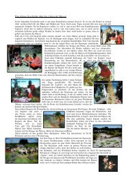 Projekt Afrika 3. Geschichte Koperie.pdf