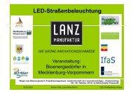 Gunter Klee - LED-Straßenbeleuchtung. Wege zum Bioenergiedorf. 29 ...