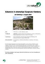Exkursion i Exkursion in ehemalige Gipsgrube Kienberg ehemalige ...