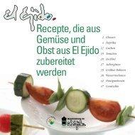 Recepte, die aus Gemüse und Obst aus El Ejido ... - Ayuntamiento