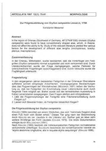ARTICULATA 1997 12(1): 75-81 MORPHOLOGIE Zur ...