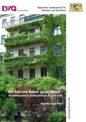 Mit Seil und Haken an der Wand - Bayerische Landesanstalt für ...