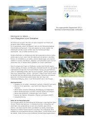 Schweden Experiment 2011- Die Kunst zu leben