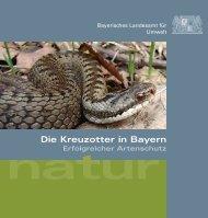 Die Kreuzotter in Bayern - Naturpark Bayerischer Wald