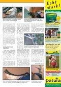 Scharf spart Mäuse - encons.de - Seite 2