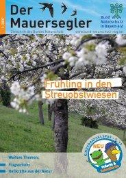 1- 2007 Der Mauersegler - Bund Naturschutz in Bayern eV: Home