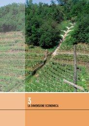 3 la dimensione economica - Servizio Bacini montani - Provincia ...