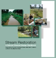Stream Restoration - Biological and Agricultural Engineering - North ...