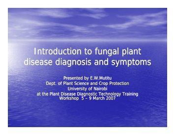 Introduction to fungal plant di di i d t di di i d t disease diagnosis and ...
