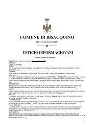 ufficio informagiovani - Comune di Bisacquino