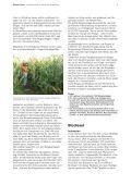 Climate-Crimes-72dpi - Seite 6