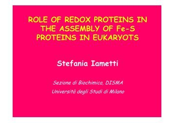 ROLE OF REDOX PROTEINS IN THE ASSEMBLY OF Fe-S ...