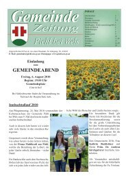 Folge 4-2010.indd - Pichl bei Wels - Land Oberösterreich