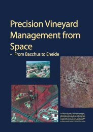 Precision Vineyard Management from Space Precision ... - ESA