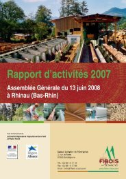 Rapport d'activités 2007 - FIBOIS Alsace
