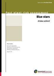 Pest plant risk assessment: Blue stars—Aristea ecklonii
