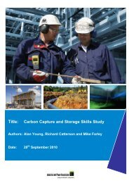 Title: Carbon Capture and Storage Skills Study - Industrial & Power ...