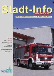 Stadt-Info 4/2009 - Seekirchen am Wallersee