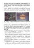 Das Druckwellen-Impulsverfahren für die ... - em-bohr.de - Seite 5