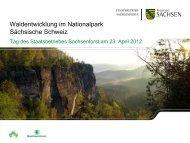 Waldentwicklung im Nationalpark Sächsische Schweiz [Download ...