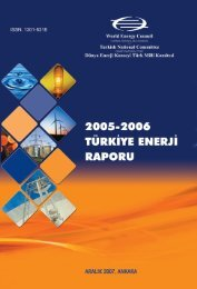 2005-2006 türkiye enerji raporu - Dünya Enerji Konseyi Türk Milli ...