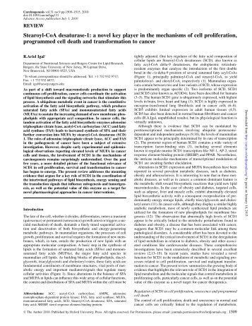 Stearoyl-CoA desaturase-1: a novel key player in ... - Carcinogenesis
