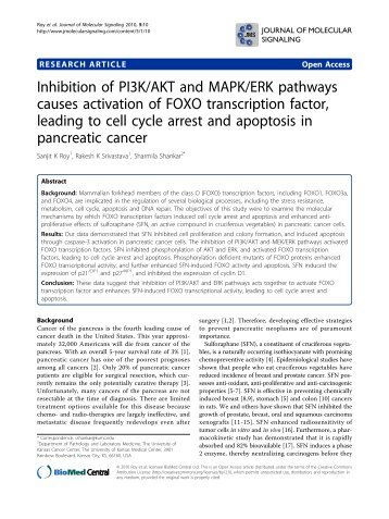 Inhibition of PI3K/AKT and MAPK/ERK pathways - Journal of ...