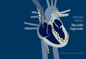 Sebastiaan Hammer Myocardial Triglycerides - NVE