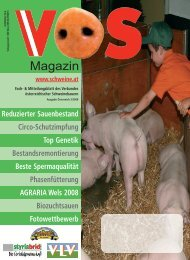 voes 3-2008:VÖS 1/2005 - Schweine.at