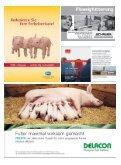 voes 3-2008:VÖS 1/2005 - Schweine.at - Seite 2