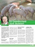 voes 3-2008:VÖS 1/2005 - Schweine.at - Seite 6