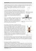 Biologi og bekjempelse av maur - Folkehelseinstituttet - Page 7