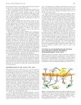 Role of Epithelial Cells in Idiopathic Pulmonary Fibrosis - Page 6