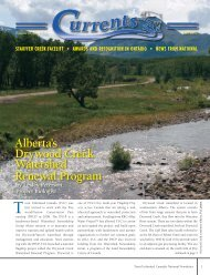 What's Going On? by Jeff Surtees - Trout Unlimited Canada