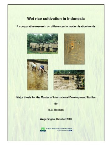 Wet rice cultivation in Indonesia - Free EBooks Library