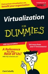 Virtualization For Dummies, AMD Special