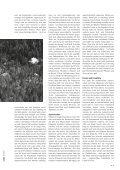 zalp 20/2009 - Seite 5