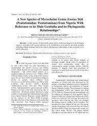 A New Species of Myrocheine Genus Ennius - Zoological Society Of ...