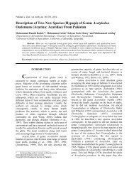 Description of Two New Species (Hypopi) - Zoological Society Of ...