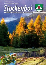 Ausgabe vom Oktober 2010 - in Stockenboi!