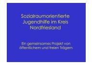 Sozialraumorientierte Jugendhilfe im Kreis Nordfriesland - Erev