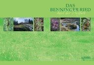 Das Benninger Ried (PDF) - Regierung von Schwaben - Bayern